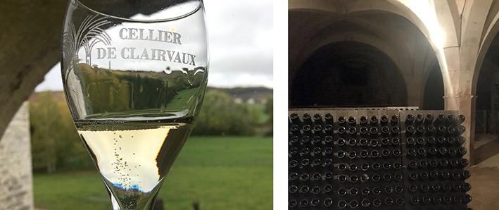 Champagne vineyard France