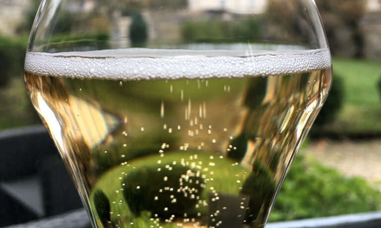 Travels in Champagne
